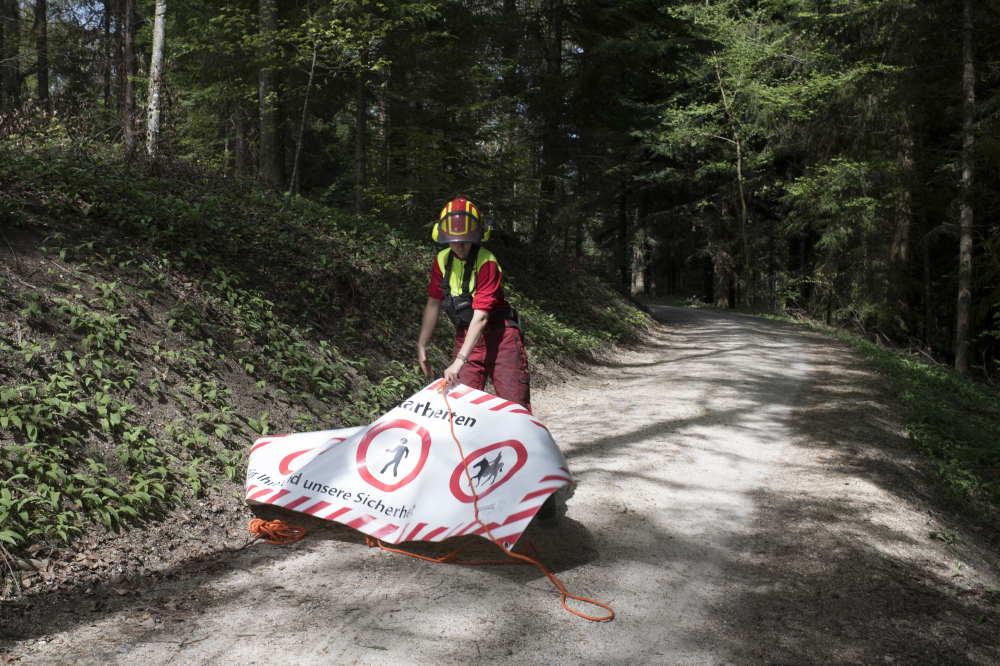 Holzschlag vorbereiten