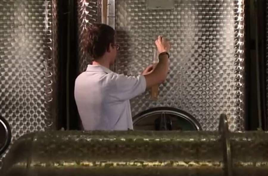 Weintechnologe/-login EFZ