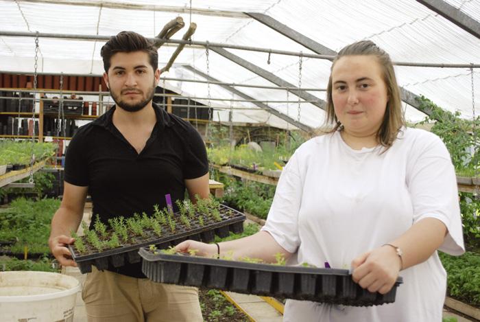 Serkan und Jasmin können bald ins SEMO Standard übertreten. Sie haben ihre Grundarbeitsfähigkeit schon fast erreicht. (Bild: Daniel Fleischmann)