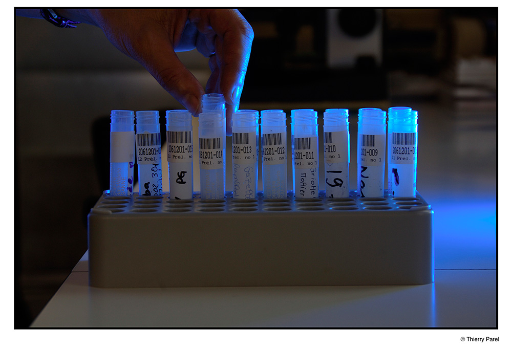 Tests en laboratoire
