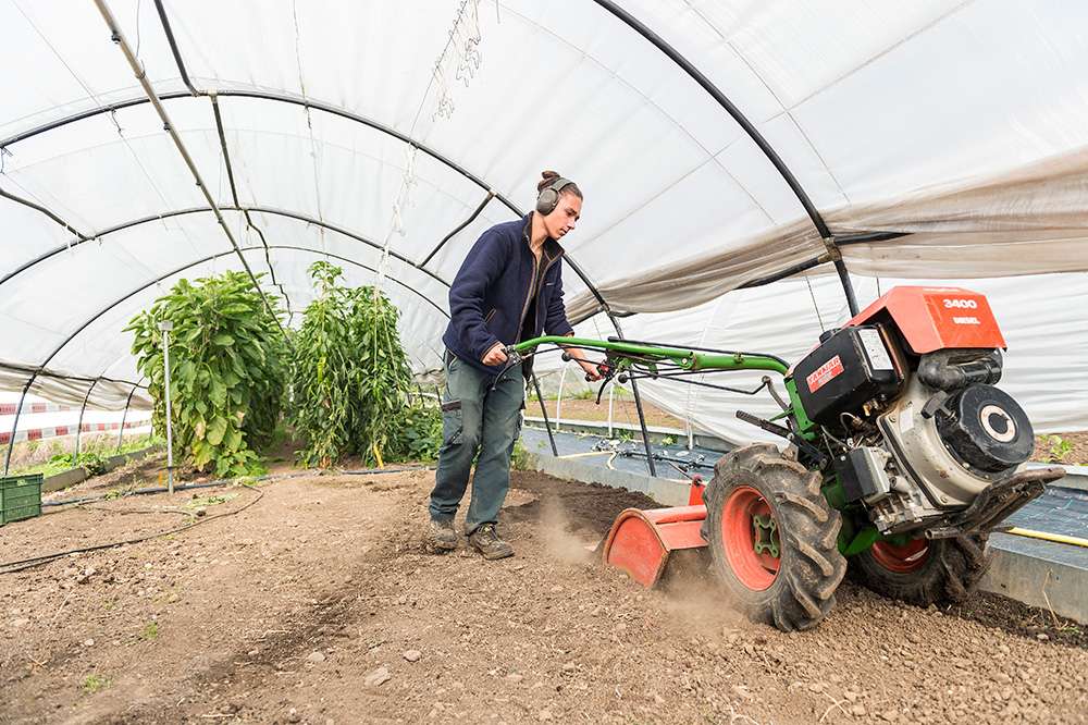 Préparer le sol