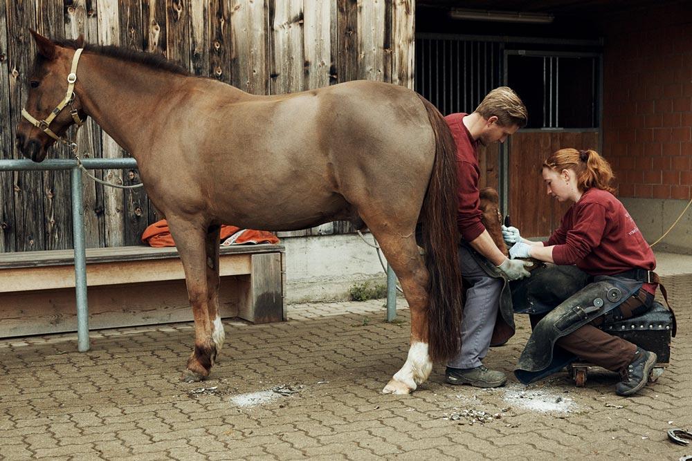 Sostituire i vecchi ferri di cavallo